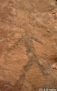 Mouflon-girafe abri  10