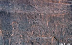 Wadi Tin Uded III12