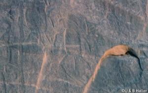 Wadi Tin Uded III16